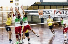 hydra volley latina
