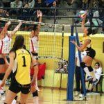 fruvit vs volley dolo